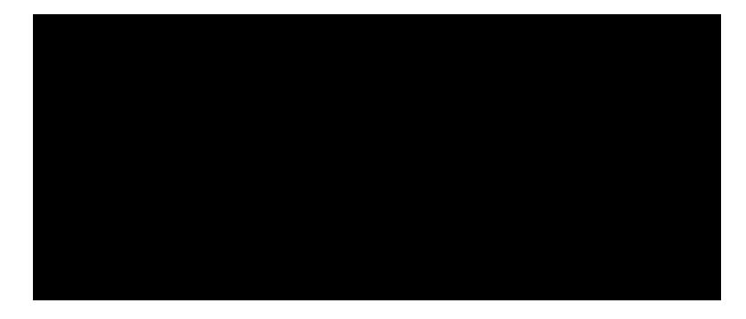 pinie-zeichnung